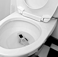 Dropped Phone in Toilet